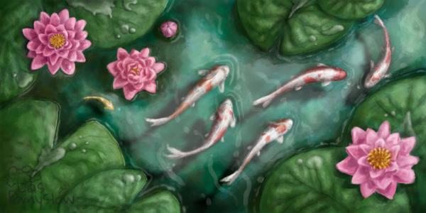 Ryby Koi